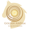cropped-golden_airfilm_logo.png